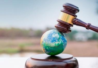 Direito Ambiental: entenda o conceito em 5 pontos